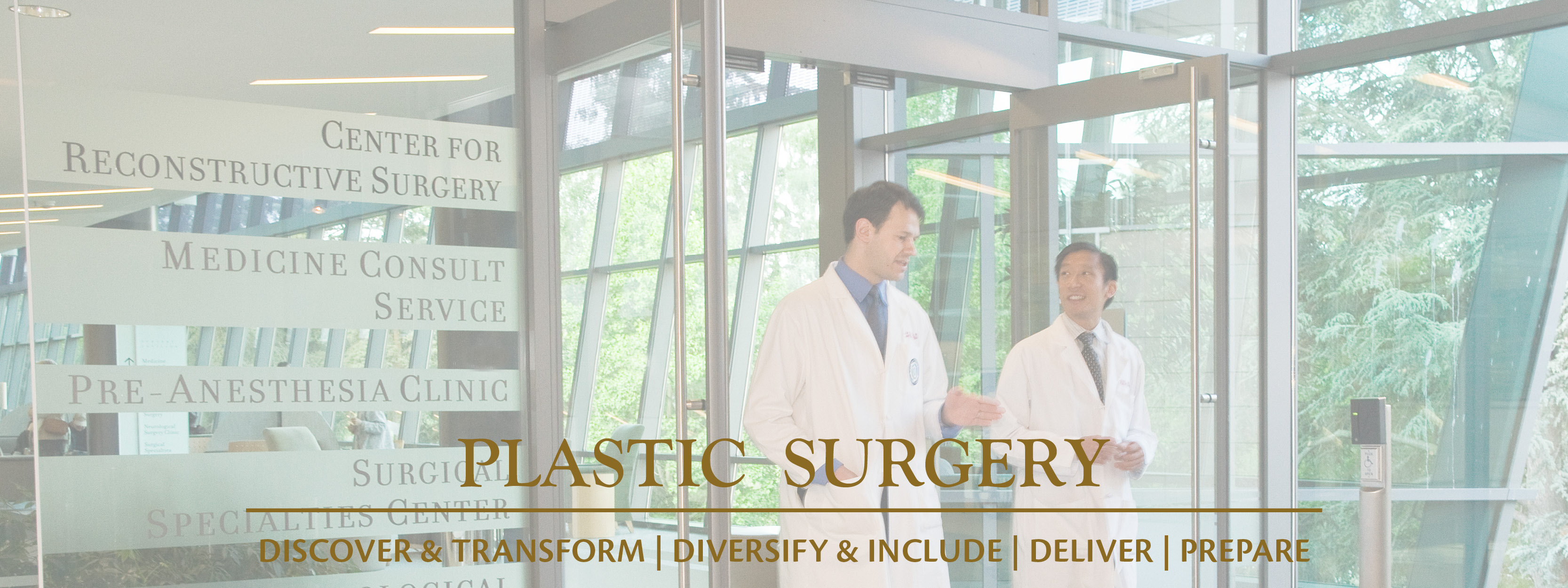 Plastic Surgery – Department of Surgery