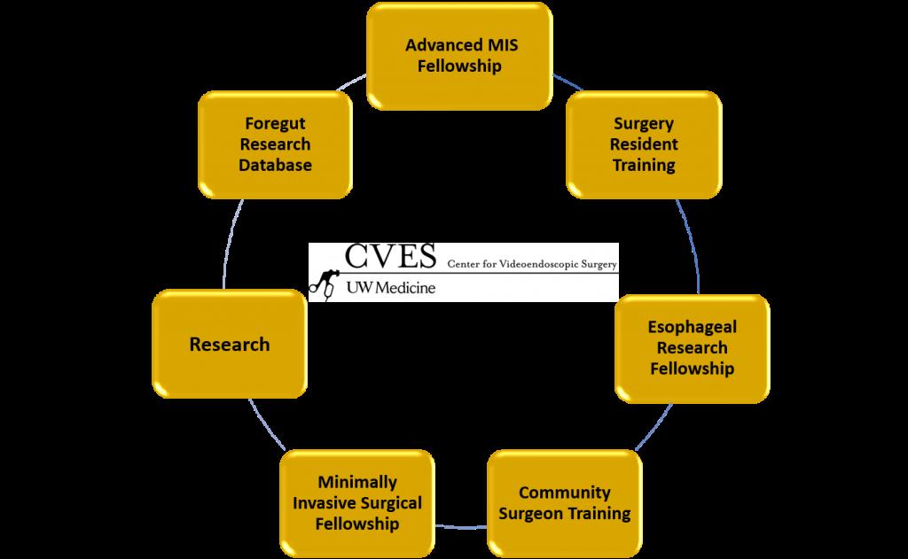 CVES Diagram